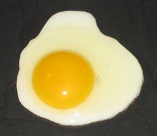 Fried_egg,_sunny_side_up