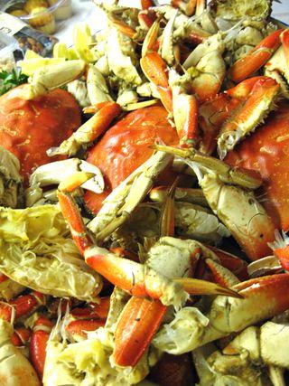 Crab_FP