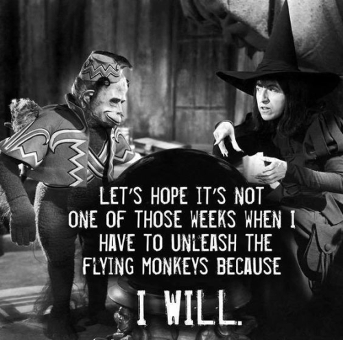 29-Witch release flying monkies I will