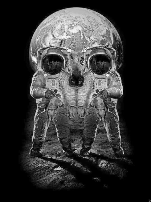 30-Skull Space